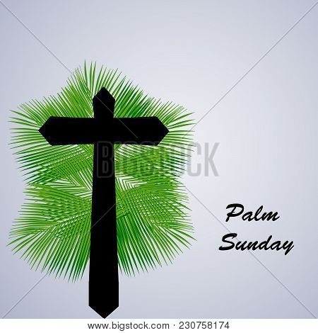 Illustration Of Cross On Palm Leaves Background With Palm Sunday Text On The Occasion Of Christian M