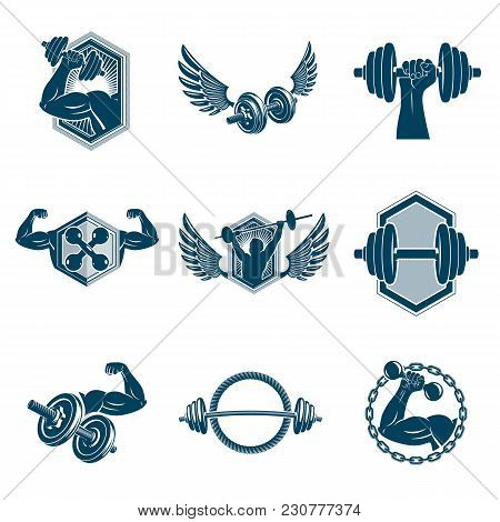Vector Fitness Workout Theme Illustrations Collection Created With Dumbbells, Barbells And Disc Weig