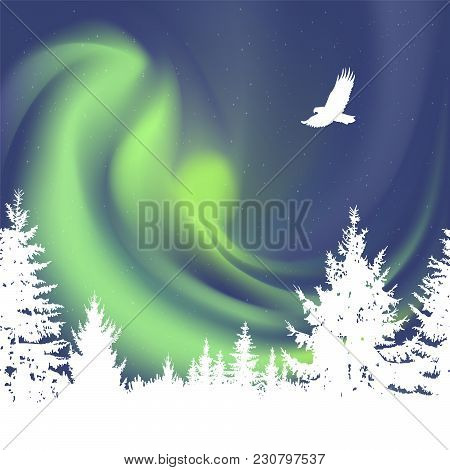 Abstract White Silhouette Of Coniferous Trees On The Background Of Colorful Sky.  Flying Eagle. Gree