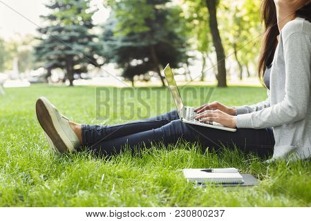 Young Unrecognizable Woman Sitting Outdoors On Grass With Laptop, Typing, Surfing Internet, Preparin