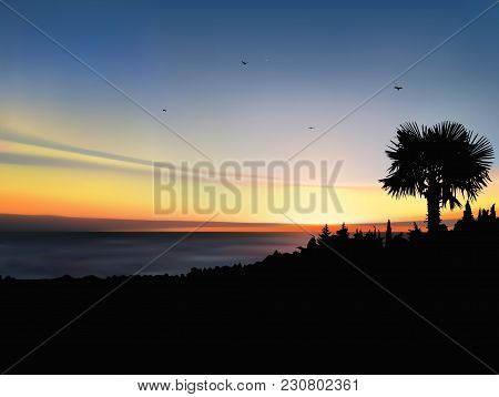 Image Landscape. Sunset On Exotic Island.  A Flock Of Birds On The Background Of Colorful Sky.
