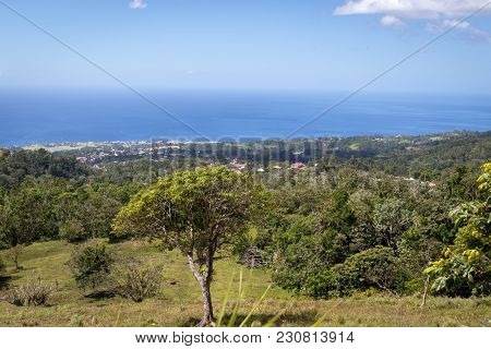 Idyllic Panoramic View Of Lush Green Vegetation And Caribbean Sea In The Tropical Island Guadeloupe.