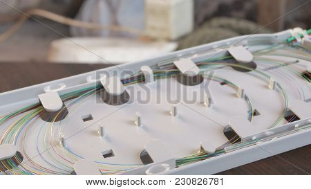 Fiber Optical Box With The Fibers In The Tray