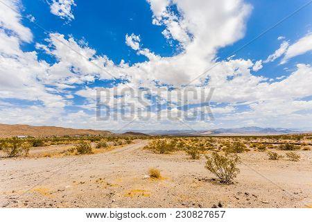 Desert Landscape_sd_1303
