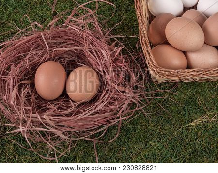 Eggs In A Baguette And Eggs In A Chicken Nest On The Grass