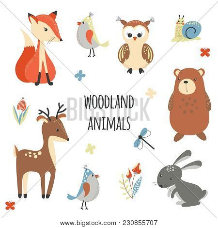 Set Of Cute Woodland Animals Isolated On White Background. Cartoon Animals In Bright Colors For Kids