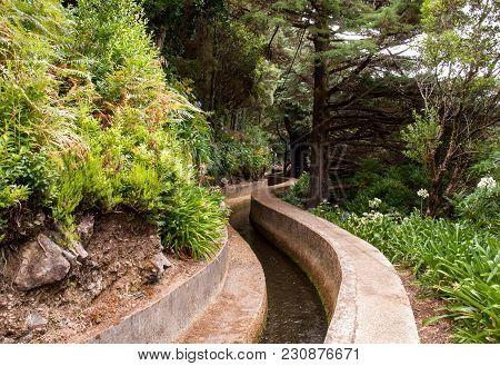 Levada Do Norte Near Boca Da Encumeada On Madeira Island. Portugal