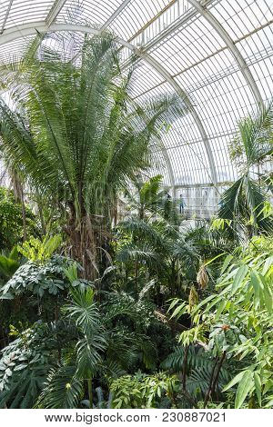 London, Uk - April 18, 2014. Interior Of The Palm House At Kew Gardens. The Gardens Were Founded In