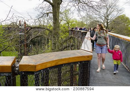 London, Uk - April 18, 2014. Treetop Walkway At Kew Botanic Gardens. The Walkway Allows Visitors To