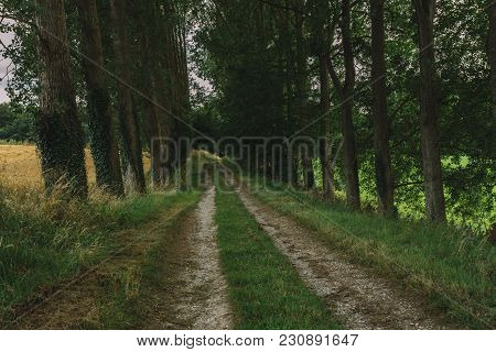 Picturesque Country Gravel Road Passing Through Forest And Fields In The Region Of Normandy, France.
