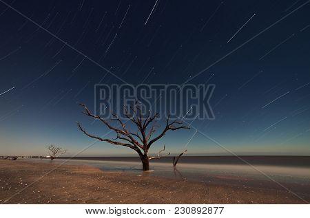 Botany Bay At Starry Night, South Carolina, Usa