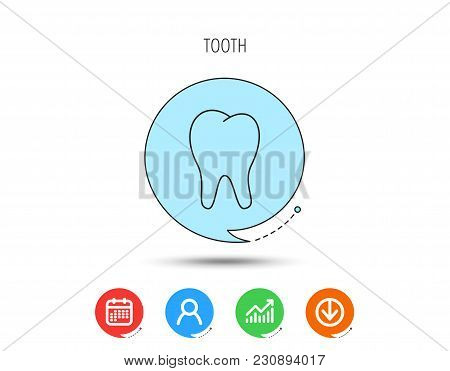 Tooth Icon. Stomatology Sign. Dental Care Symbol. Calendar, User And Business Chart, Download Arrow
