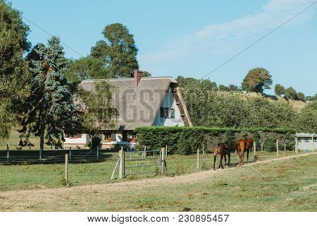 Country House With Thatched Roof And Green Garden In Normandy, France On A Sunny Day. Beautiful Coun