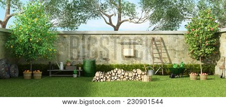 Rural Garden With Fruit Trees And Firewood On Grass - 3d Rendering