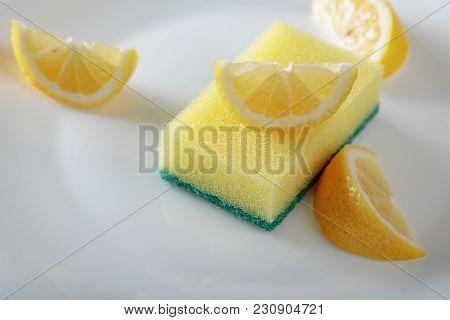 White Plate And Dish Sponge .