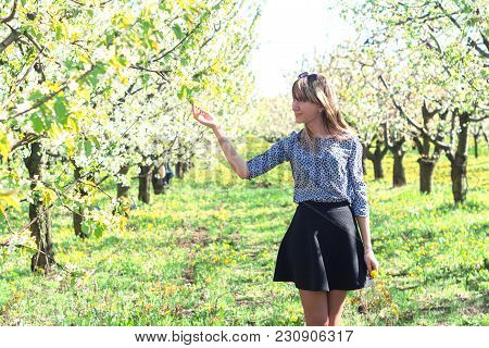 Beautiful Girl In A Blooming Spring Garden With A Fan Blooming Cherries And Apple Trees In The Sprin