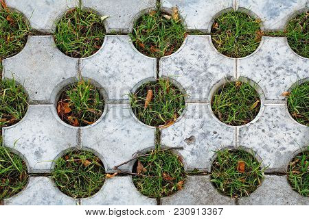 Decorative Pavement With Holes Filled With Grass As Background Or Texture