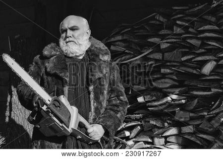 Old Bearded Man With Long Silver Beard And Moustache In Fur Coat Holding Big Chainsaw Sunny Day Outd