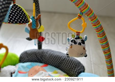Toys For Newborns Hang Over The Rug