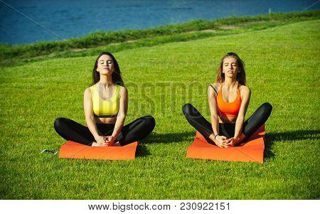 Sexy Women Athletes Do Yoga Exercises, Training. Women Training On Green Grass, Sport. Energy, Energ