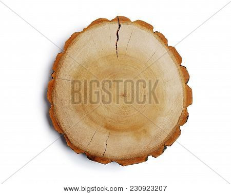 Vintage Large Circular Piece Of Wood Cross Section With Tree Ring Texture Pattern And Cracks Isolate