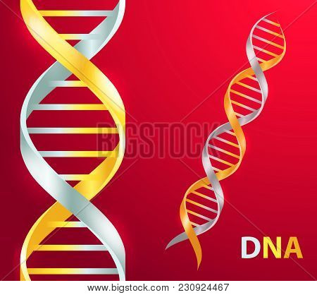 Gold And Silver Dna Icon. Dna Symbol. Dna Helix Symbol. Gene Icon. Vector Illustration On Red Backgr