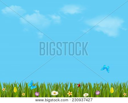 Spring Or Summer Vector Cartoon Colorful  Illustration With Beautiful Meadow Field With Green Grass,