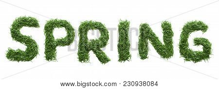 Spring  Made Of Green Grass Isolated On White
