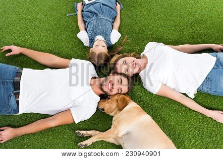 Overhead View Of Happy Family With Dog Lying On Green Lawn Together