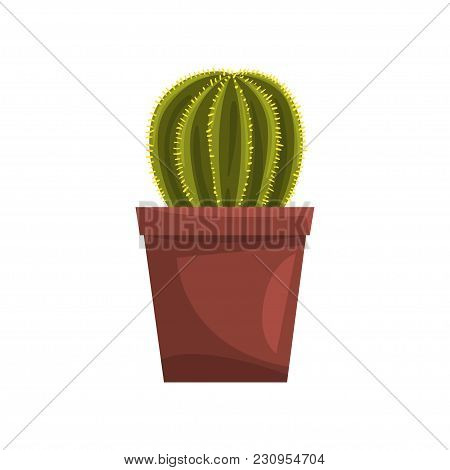 Cactus Indoor House Plant In Brown Pot, Element For Decoration Home Interior Vector Illustration Iso