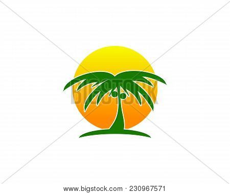 Is A Symbol Associated With Nature Ie Plants Or Coconut Trees
