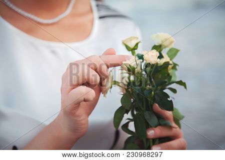 The Gentle Hands Of The Bride, The Girls With Trembling Touch Beautiful Roses. Gentle Roses. Beautif