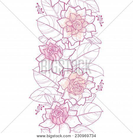 Vector Seamless Pattern With Outline Gardenia In Pastel Pink Color. Ornate Flower, Bud And Leaves On
