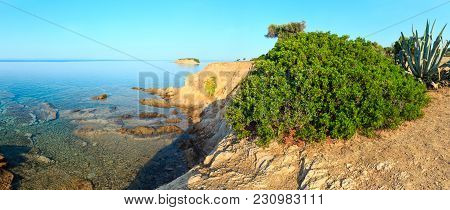 Morning Aegean Sea Rocky Coast View With Big Bush And Agave Plant (nikiti, Sithonia, Halkidiki, Gree
