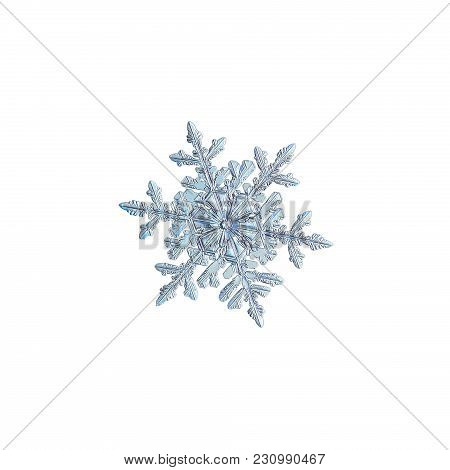 Snowflake Isolated On White Background. Macro Photo Of Real Snow Crystal: Small Stellar Dendrite Wit