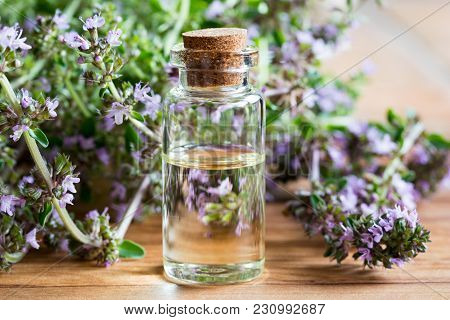 A Bottle Of Breckland Thyme (thymus Serpyllum) Essential Oil With Fresh Blooming Breckland Thyme Twi