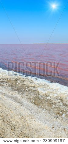 Sunshiny Pink Extremely Salty Syvash Lake, Colored By Microalgae With Crystalline Salt Depositions.