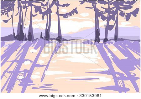 Sunny Fairy Frosty Winter Forest With Mistery Light, Shadows, Sullen Winter Forest