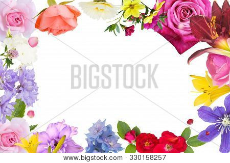 Frame Of Plant Flowers. Flowery Border.flowery Border From Pink, Tea,red Roses, Yellow And Purple Li