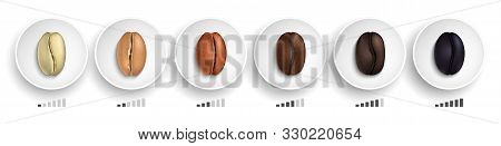 Coffee Roasting Guide. Realistic Coffee Beans In Various Roasting Stages On White Plates Vector Illu