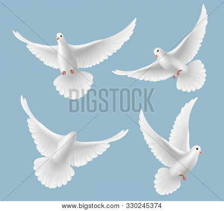 White Pigeons. Dove Love Flying Birds In Sky Symbols Of Freedom And Wedding Vector Realistic Picture