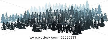 Forest Silhouette Landscape. Coniferous Forest Panorama. Winter Christmas Forest Of Fir Trees Silhou