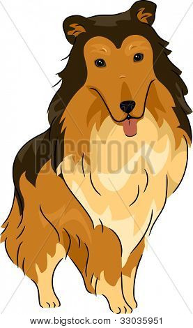 Illustration Featuring a Collie