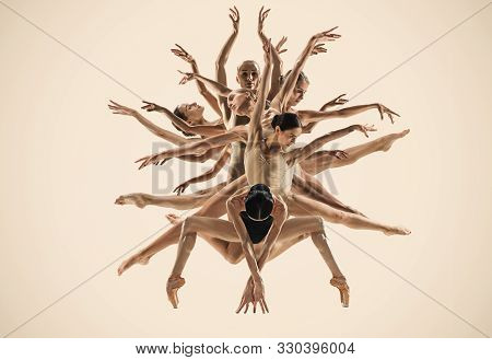 The Group Of Modern Ballet Dancers Like A Tree. Contemporary Art Ballet. Young Flexible Athletic Peo
