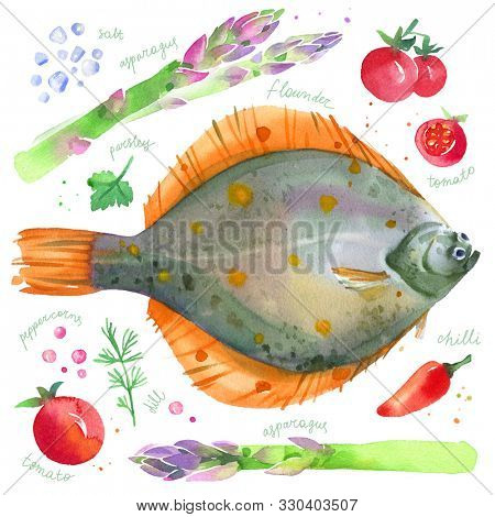 Watercolor set with flounder; plaice fish, asparagus, cherry tomotoes and herbs. Hand drawn illustration of  mediterranean food isolated on white background