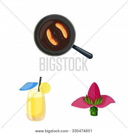 Isolated Object Of Tropical And Ripe Logo. Collection Of Tropical And Potassium Stock Vector Illustr