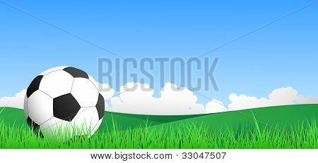 football in a field