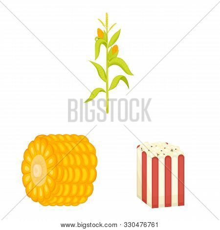 Vector Illustration Of Maize And Food Logo. Set Of Maize And Crop Vector Icon For Stock.
