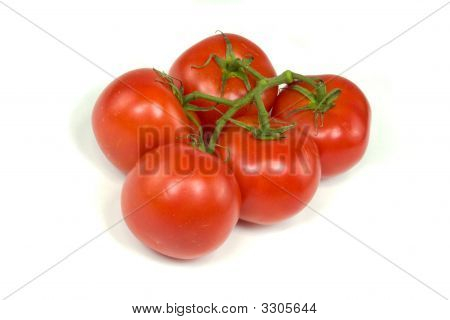 Vine Tomatoes On White