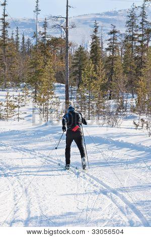 Skier Runs Cross-country Skiing